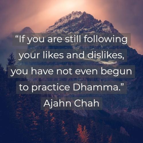 Ajahn-Chah-Likes-DIslikes